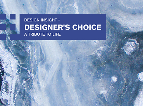 DESIGN INSIGHT - DESIGNER'S CHOICE